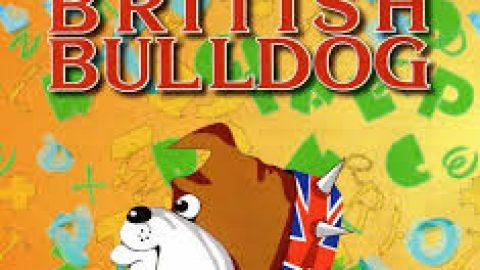 Британский бульдог