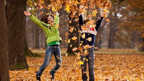 Информация по оздоровительному отдыху детей во время осенних каникул