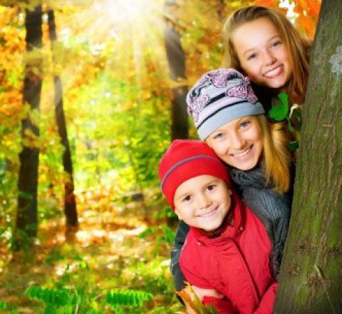 Информацию об организации отдыха и оздоровления детей и молодежи