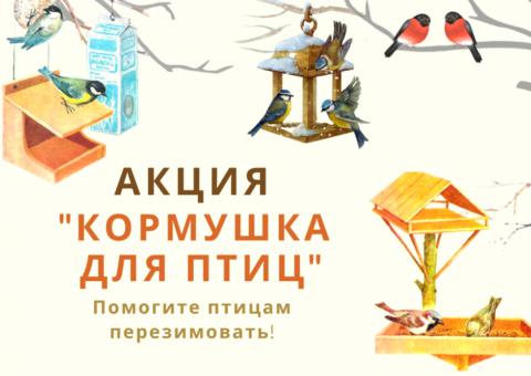 Районная акция «Кормушка для птиц»